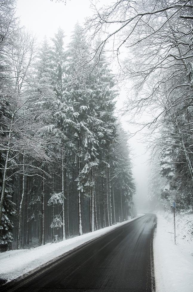 Winterwaldfoto